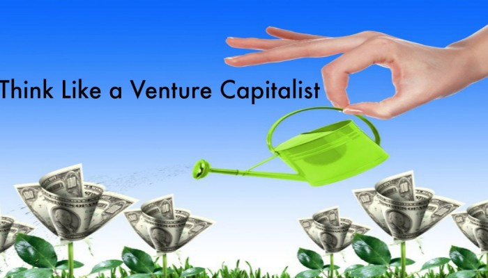 Think Like a Venture Capital Investor